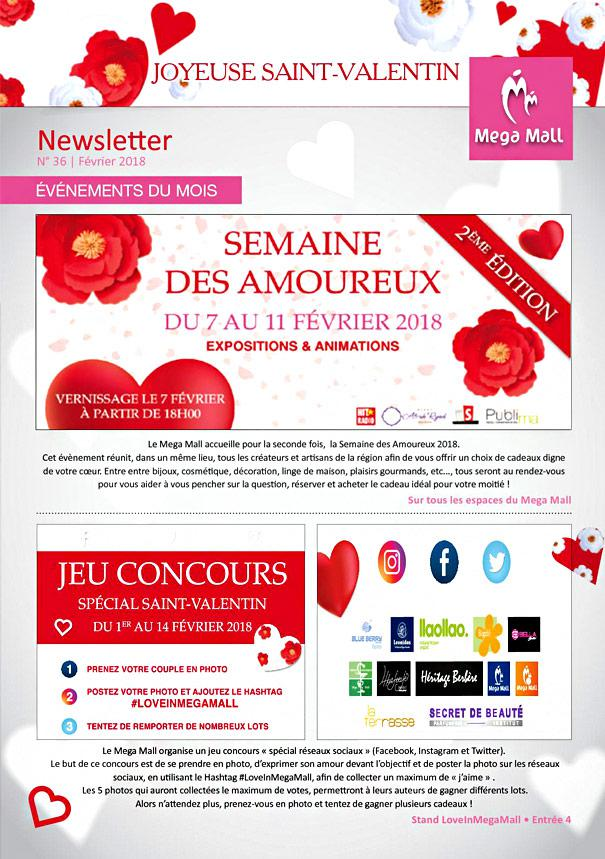 Newsletter E-commerce Saint-Valentin