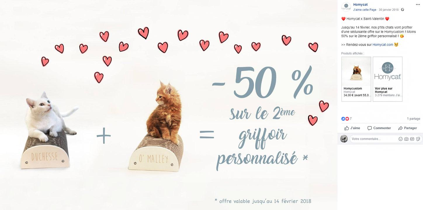 Publication Facebook de Saint-Valentin